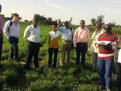 Agricultural experts FAO officials on a field tour. Photo: S Gelelcha, FAO, Ethiopia