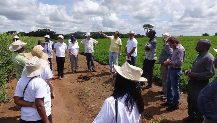 Farmer Manzure Beda explaining use of his farm for training smallholder farmers. (Photos: J. Kane-Potaka, ICRISAT)