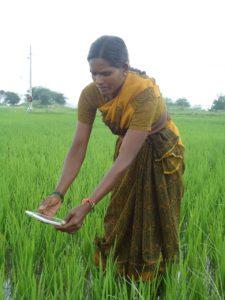 Farmers are beginning to adopt digital technologies. Photo: ICRISAT