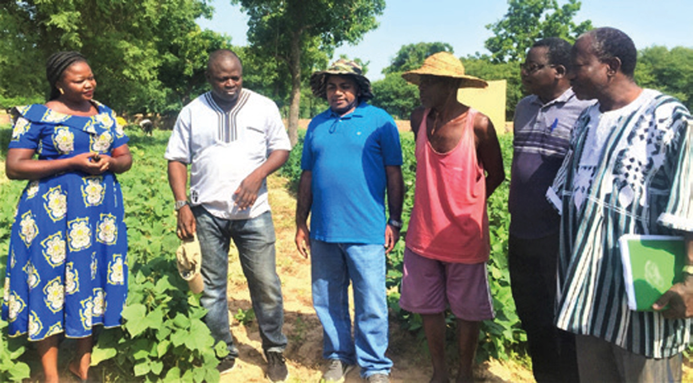 Ms Noba Francalini, owner of Epam Seeds Company, and farmer Nappon Iassane from Leo Village, Sissili Province in southern Burkina Faso, engaged in seed multiplication of improved cowpea and groundnut variety. Photo: N Mishra, ICRISAT