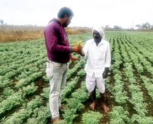 Dr Avijit Tarafdar, Visiting Scientist, ICRISAT, in conversation with chickpea farmer Mr Srinivasa Boreddy in Adilabad District, Telangana. Photo: D Chobe, ICRISAT