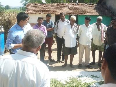Dr Rathod demonstrating silage making for livestock feeding at Kadabagatti village. Photo: ICRISAT