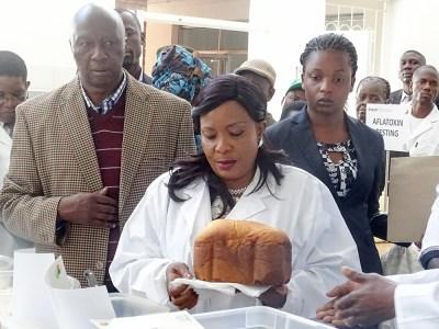 First Lady of Zimbabwe, Ms Amai Auxillia Mnangagwa, during her visit to ICRISAT's Matopos Research Station. Photo: Pamenus Tuso