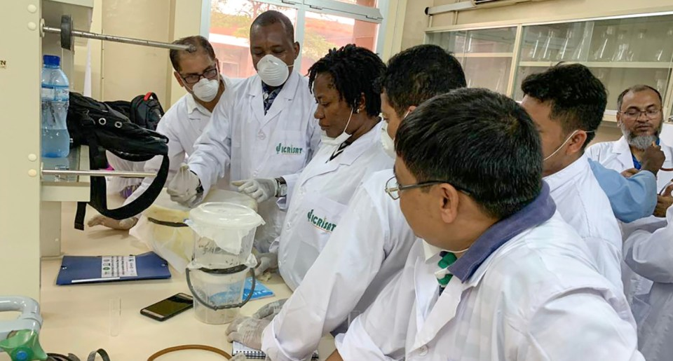 Participants during a hands-on training session at ICRISAT-Niger Laboratory in Sadoré research station. Photo: ICRISAT