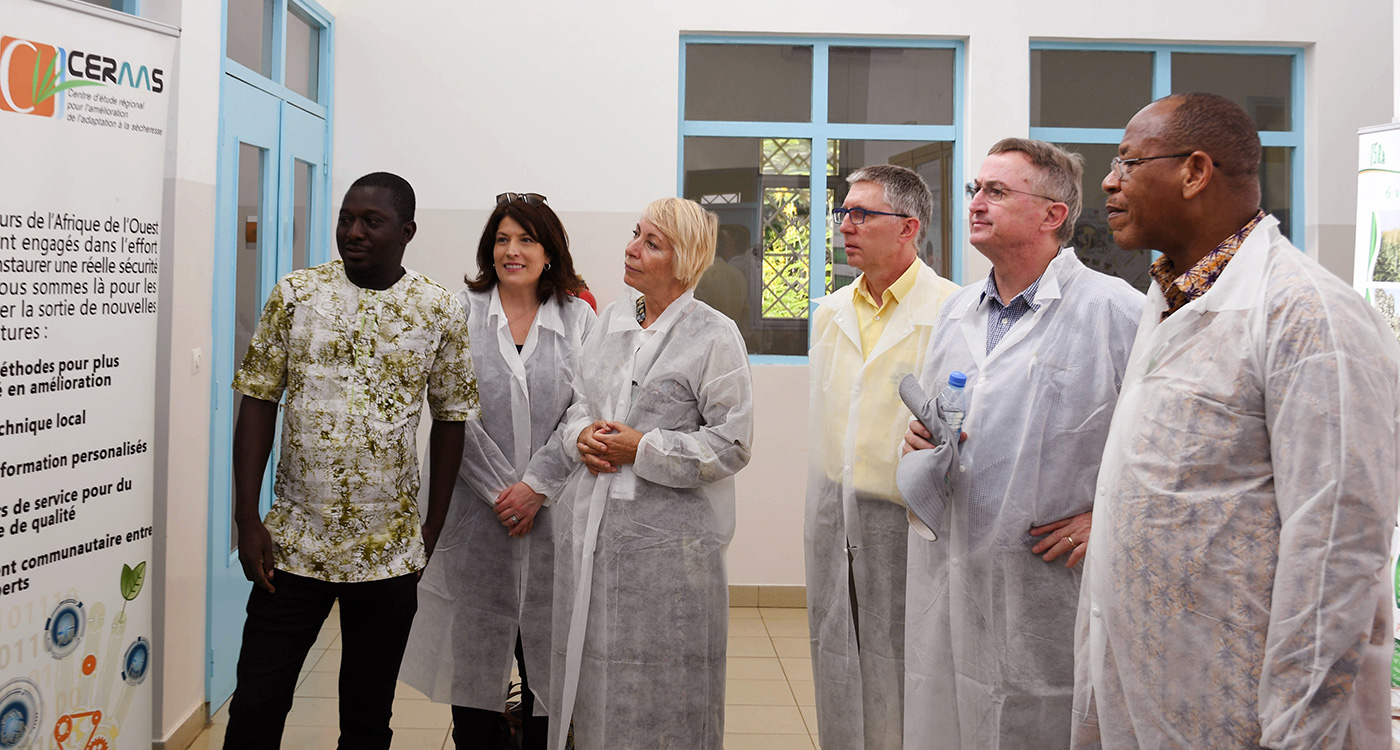 (L–R) Mr Hermann Some, CERAAS; Drs Wendy Umberger and Sissel Rogne, ICRISAT Governing Board members; Dr Jan Debaene, Global Head of Breeding, ICRISAT; Dr Peter Carberry, Director General, ICRISAT and Dr Paco Sereme, ICRISAT Governing Board Chair at Dakar, Senegal. Photo: A Diama, ICRISAT