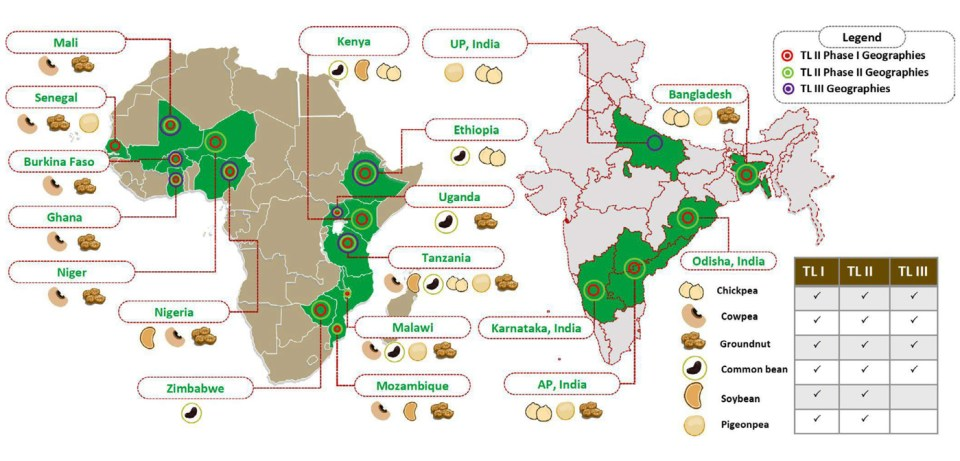 Graphical representation of the phases, crops and locations of the Tropical Legumes projects. (Source: Varshney et al., 2019, Plant Breeding Journal)