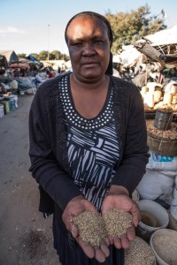 """""""Millets and sorghum, although more nutritious than maize, are hard to find in Bulawayo city"""", says Mrs Mthelia Moyo, trader at Shasha Market. After each drought, when the crops fail, maize is distributed to people to help them recover. The area under other cereals such as sorghum and millets, and legumes have been shrinking over years; with each drought, the seed sources have been depleted."""