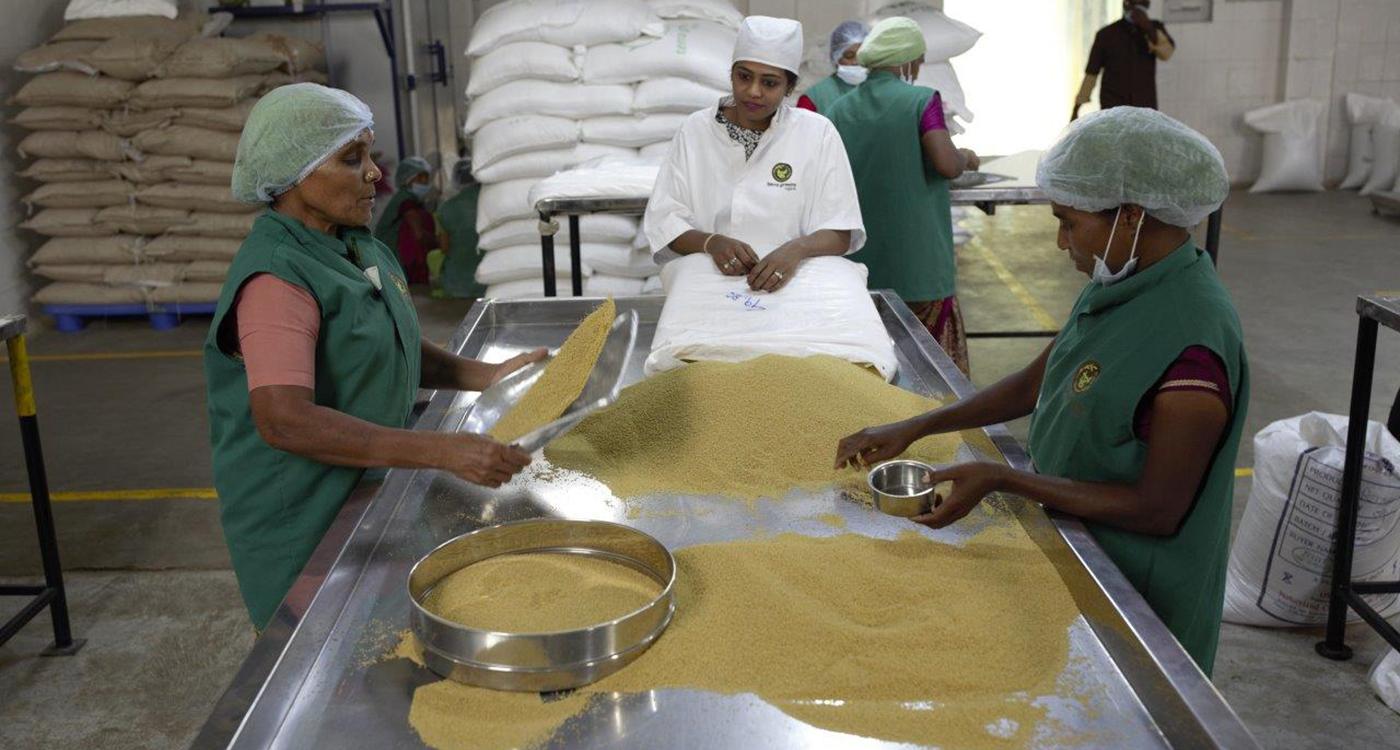 Millet processing facility at Terra Green, a millet enterprise