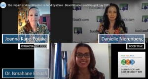 A screenshot of the virtual panel discussion between Ms Joanne Kane-Potaka, Assistant Director General, ICRISAT; Ms Danielle Nierenberg, President, Food Tank and Dr Ismahane Elouafi, Director General, International Center for Biosaline Agriculture.