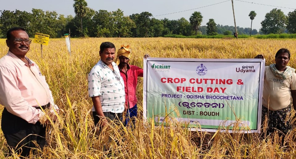 A field demonstration in Boudh district, Odisha. Photo: ICRISAT Development Center