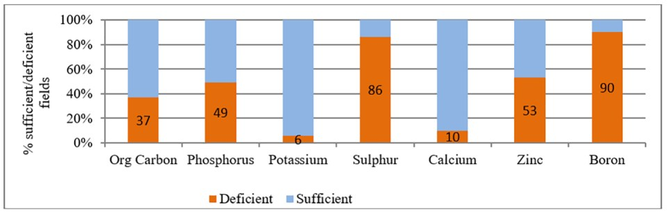 Soil fertility status of farmers' fields in the watershed, Jaipatna block, Kalahandi district.