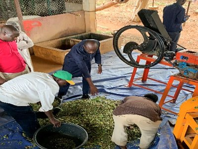 The fodder chopping machine. Photo: A Amadou, ICRISAT