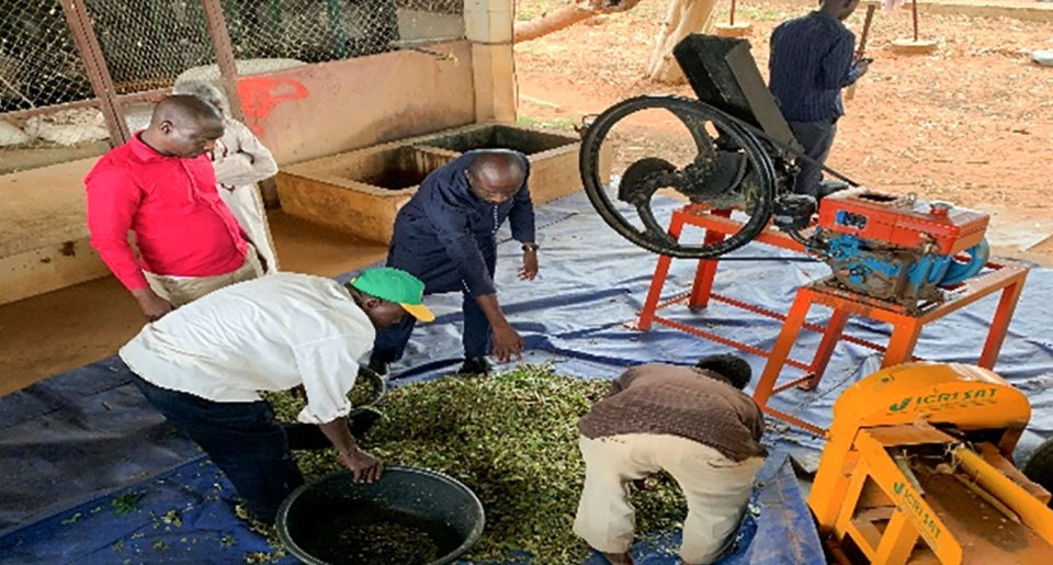 The fodder chopping machine. Photo: A Amadou, ICRISAT