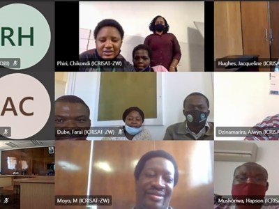 Screenshot of Dr Hughes, Director General, ICRISAT, interacting with staff of ICRISAT Zimbabwe. Photo: G Obiero, ICRISAT