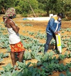 Demonstration of easy planter at Bhonsuli village, Nabarangpur district. Photo: ICRISAT Development Center
