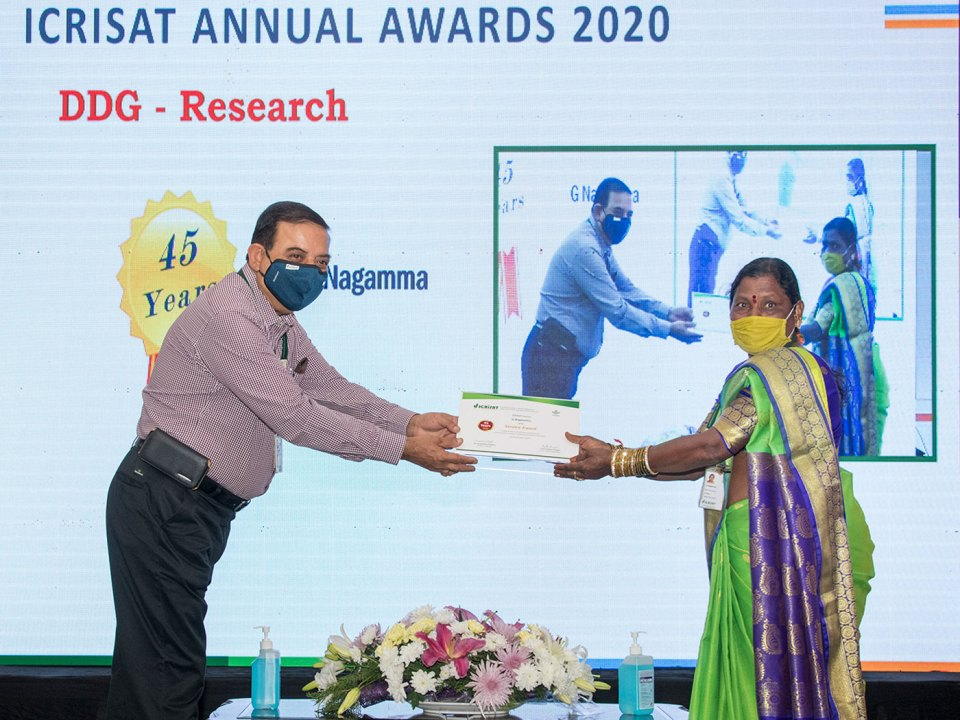 Dr Kiran Sharma, Deputy Director General, ICRISAT, presents a certificate to Ms G Nagamma in recognition of her 45 years of service. Photo: S Punna, ICRISAT