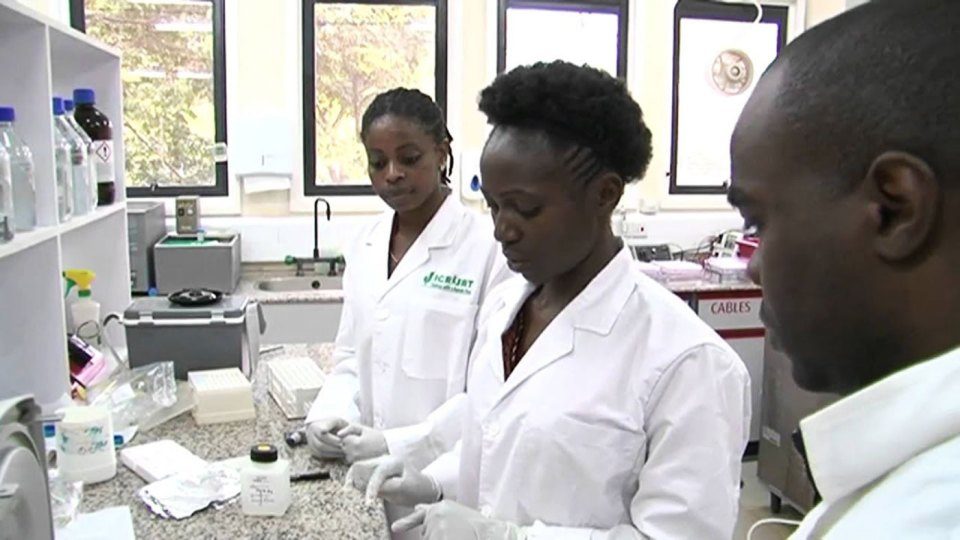 File photo of ICRISAT scientists at work in a genomics lab.