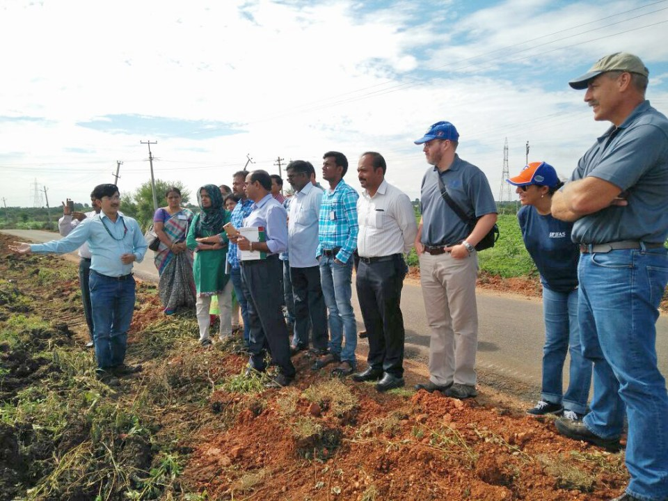 Participants at the demonstration site. Photo: ICRISAT