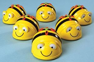6-Bee-Bots