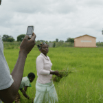 Two Questions on the Sustainability of Grameen's Android App for Farmers