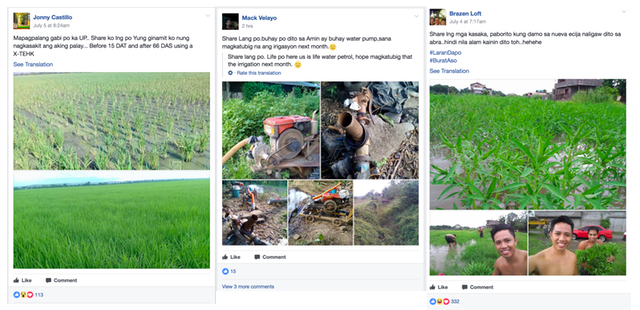 facebook groups philippines agriculutre