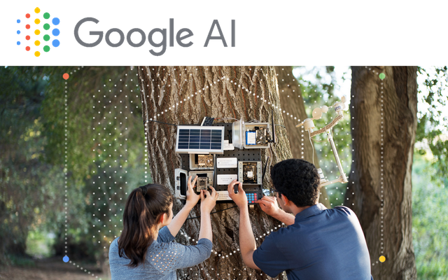google artificial intellegence grant funding