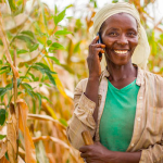 4 Key Findings: Smallholder Farmer Use of Mobile Phones for Agriculture