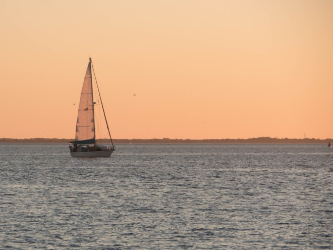 Oleada navigates the channel into Topolobampo with a little bit of evening wind in the mainsail.