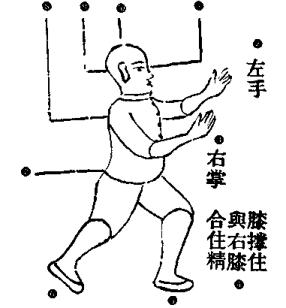 Xiao Qin Na