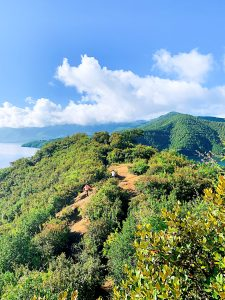 hill station tour packages in south india