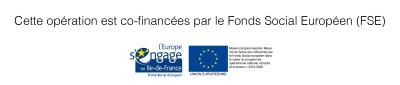 financement-FSE