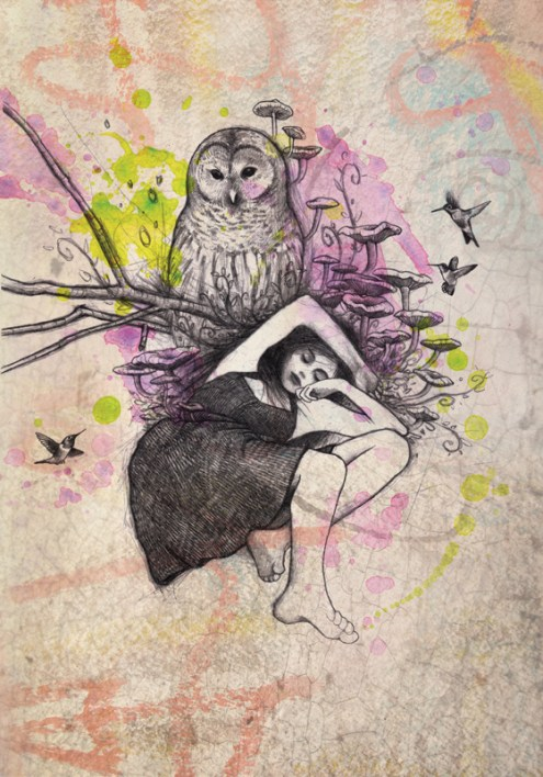 The Dream of the Owl