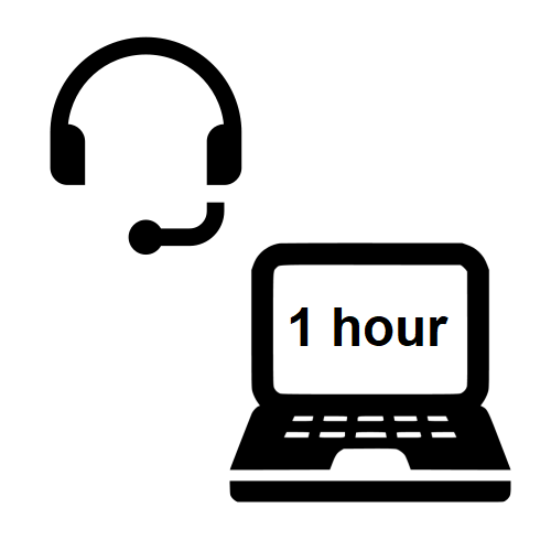 Technical Support 1 hour