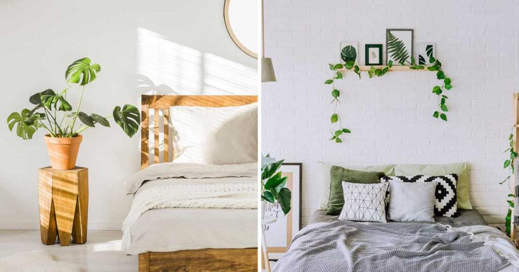 Scopri su eprice la sezione decorazioni camera da letto e acquista online. Decorare La Camera Da Letto Con Le Piante Ecco 15 Idee Per Ispirarvi