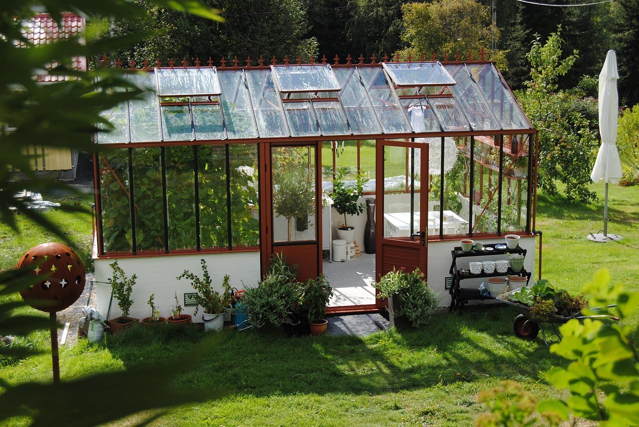 Cheap Ideas Garden