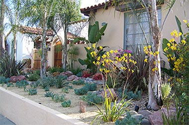 san diego drought tolerant landscaping