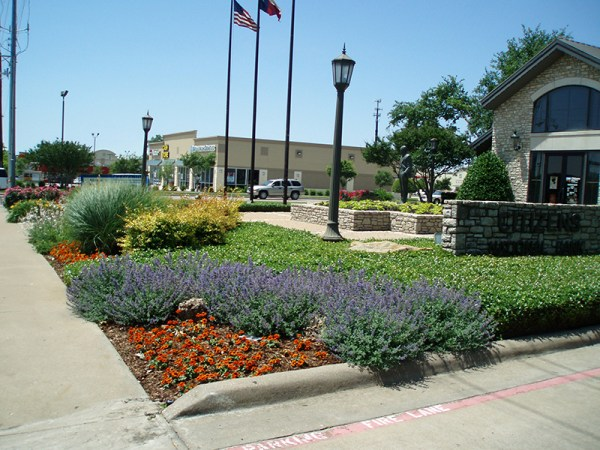 landscaping design and installation