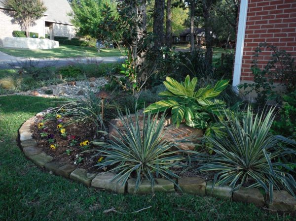 texas landscaping ideas - fort