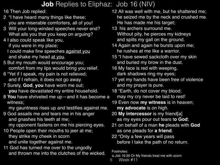 Book of Job, Raz, Week #11.005