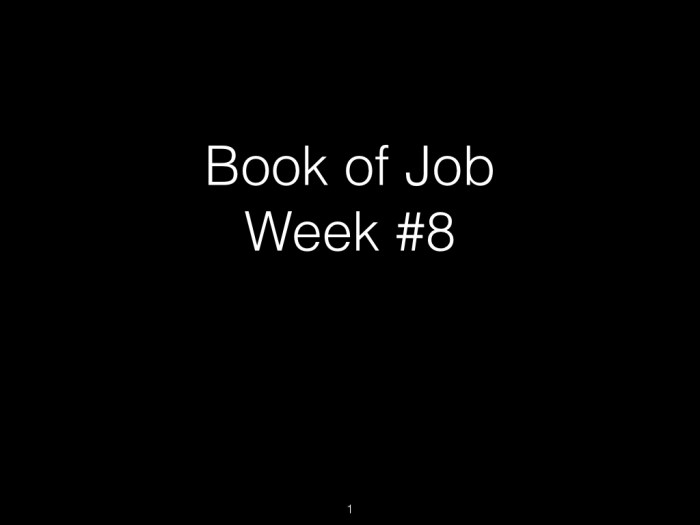 Book of Job, Raz, Week #8.001