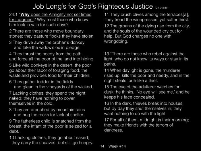 Book of Job, Raz, Week #14.014