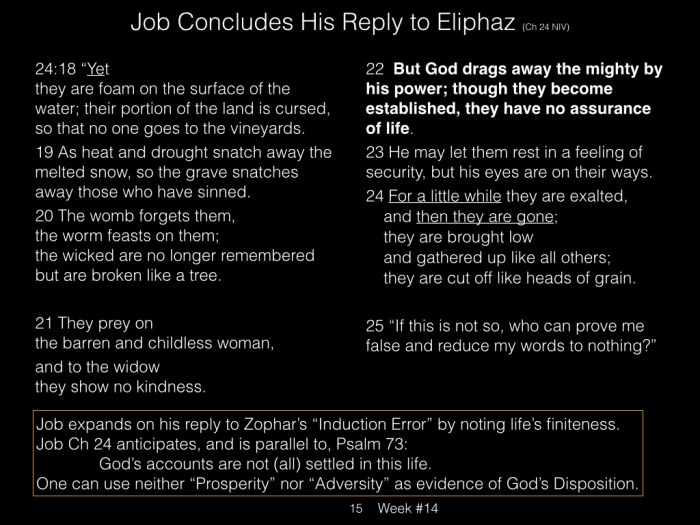 Book of Job, Raz, Week #14.015