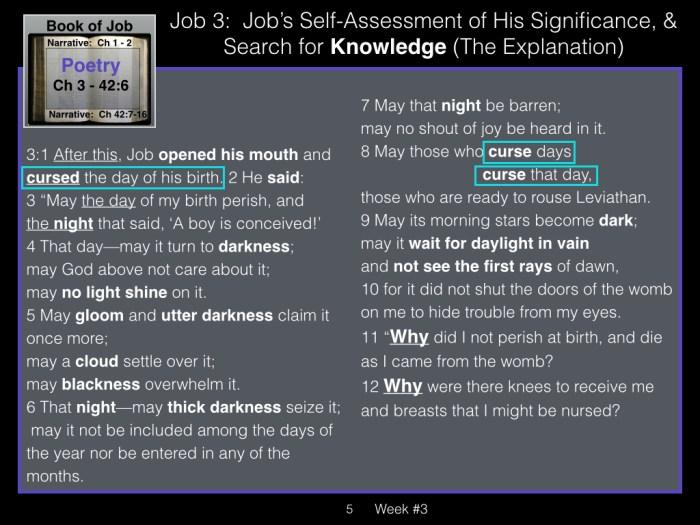 Book of Job, Week #3 LB.005