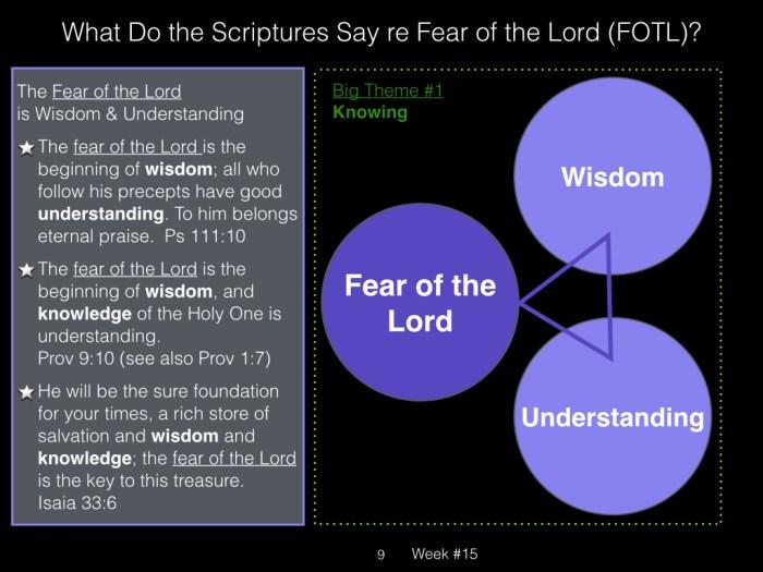 Book of Job, Raz, Week #17.009