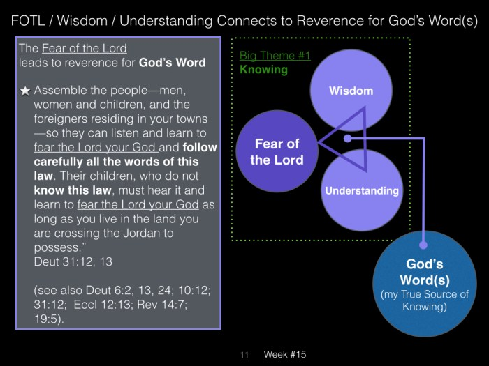 Book of Job, Raz, Week #17.011