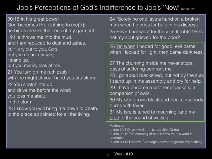 Book of Job, Raz, Week #19.006
