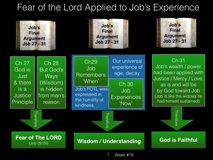 Book of Job, Raz, Week #19.007