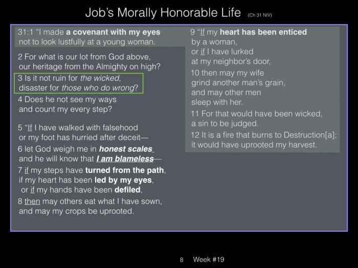 Book of Job, Raz, Week #19.008