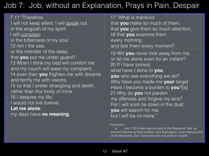 Book of Job, Week #7 LB.013