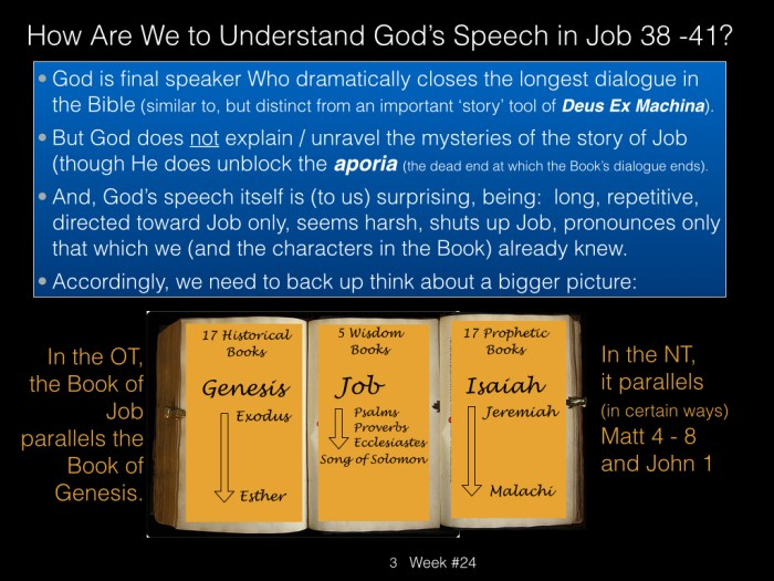 Book of Job, Raz, Week #24.003